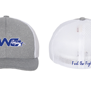 Flex Fit Gray/White/Blue Hat